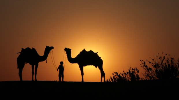 Young camel herder returning home