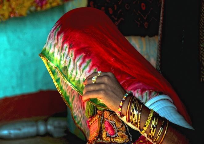 Through The Sari Veil